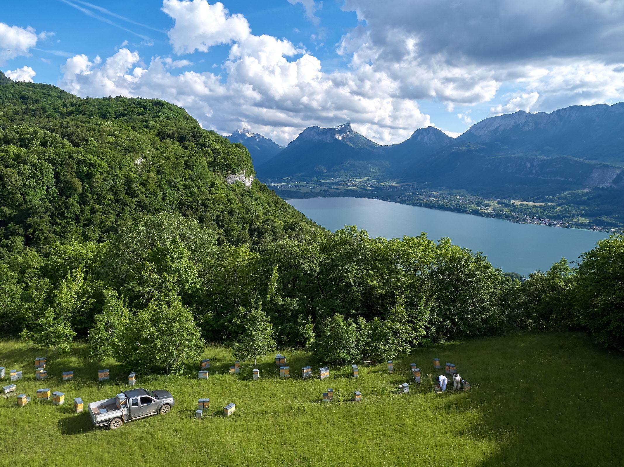 Damien Blampey - Ruchers Lac Annecy - Marché des Producteurs Haute-Savoie - Les Trésoms