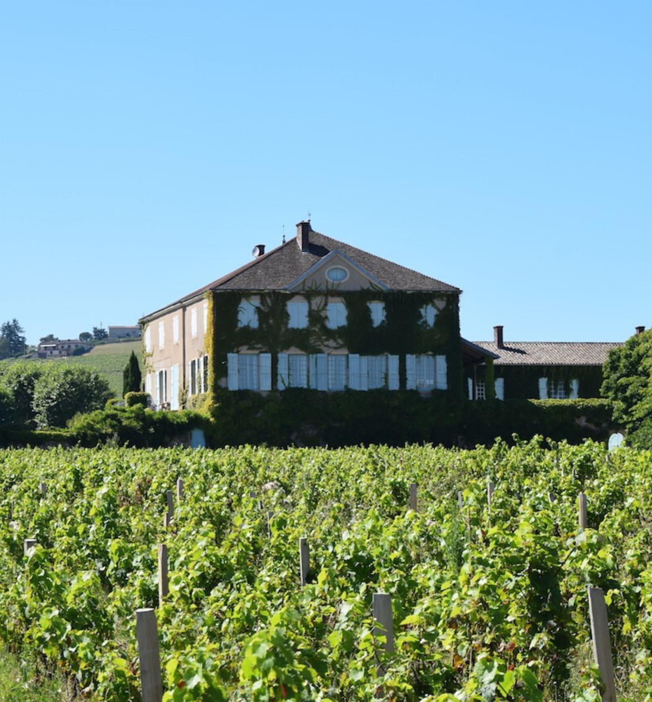 Domaine et vignes du Château des Bachelards - Marché des Producteurs - Les Trésoms Annecy