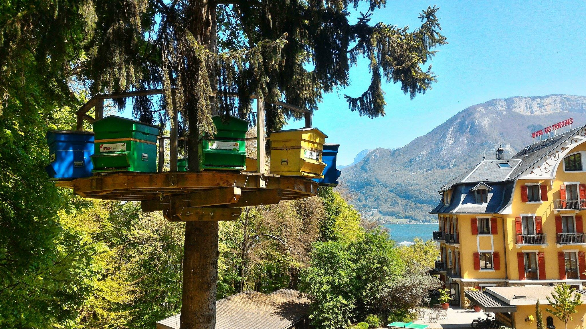 Le Rucher des Trésoms - Démarche environnementale - Clef Verte - Hôtel restaurants Spa Annecy